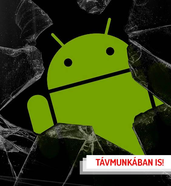 Tapasztalt Android fejlesztő